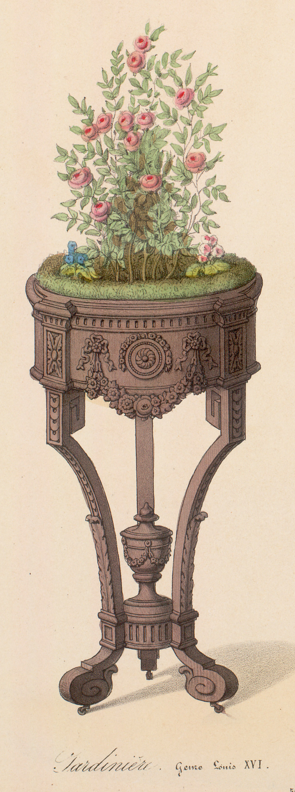 Plant stands,  Image number:SIL12-2-310b