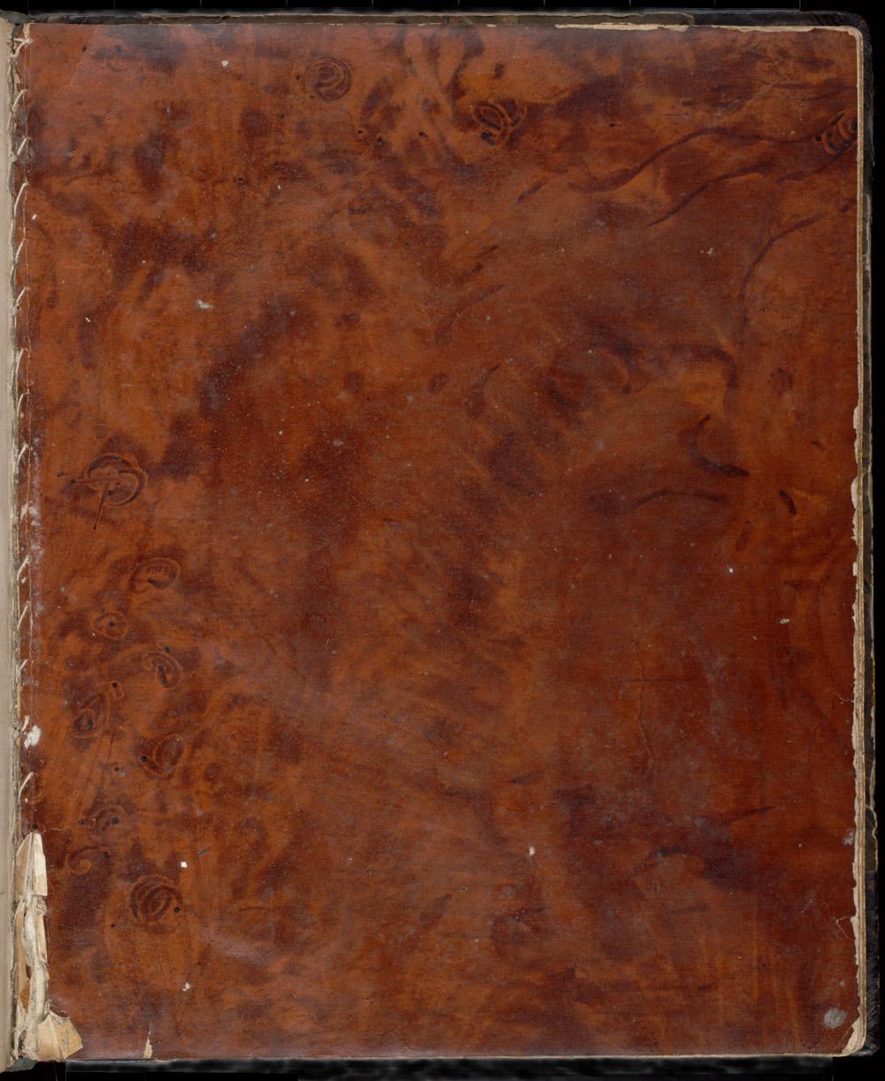 Pollard-Oak,  Image number:SIL12-1-171a