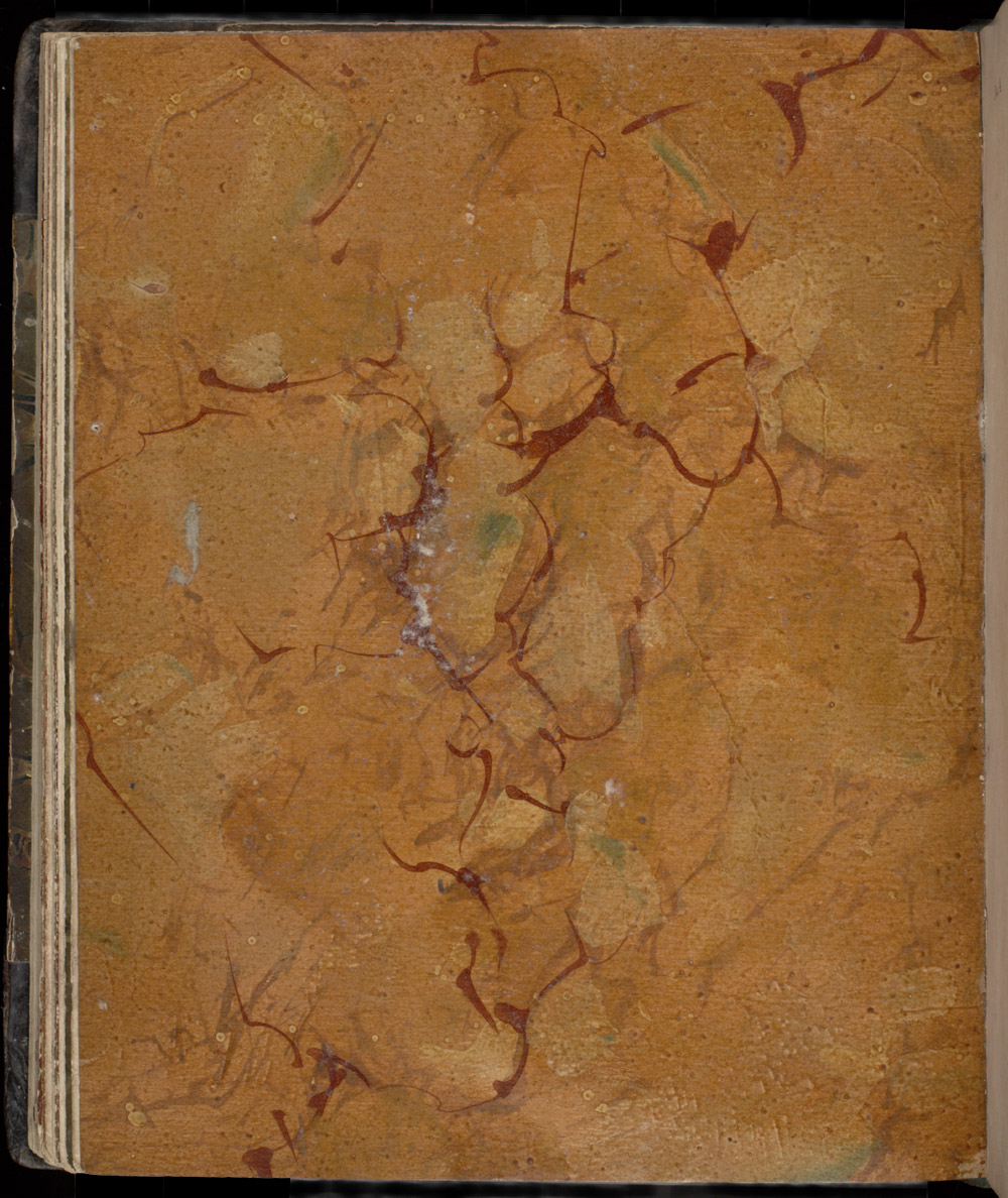 A variety of Sienna marble,  Image number:SIL12-1-214a