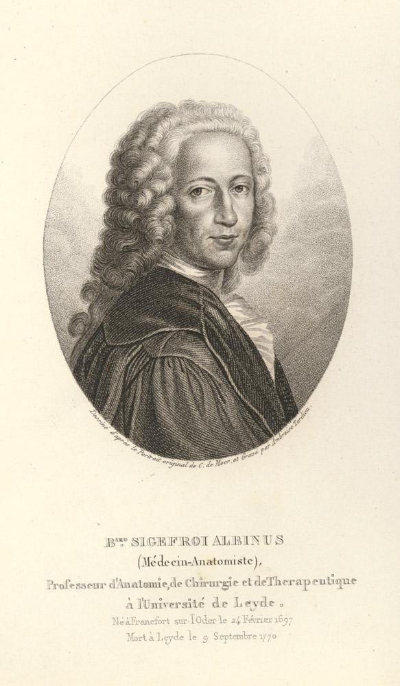 Portrait of Bernard Siegfried Albinus,  Image number:SIL14-A3-02a