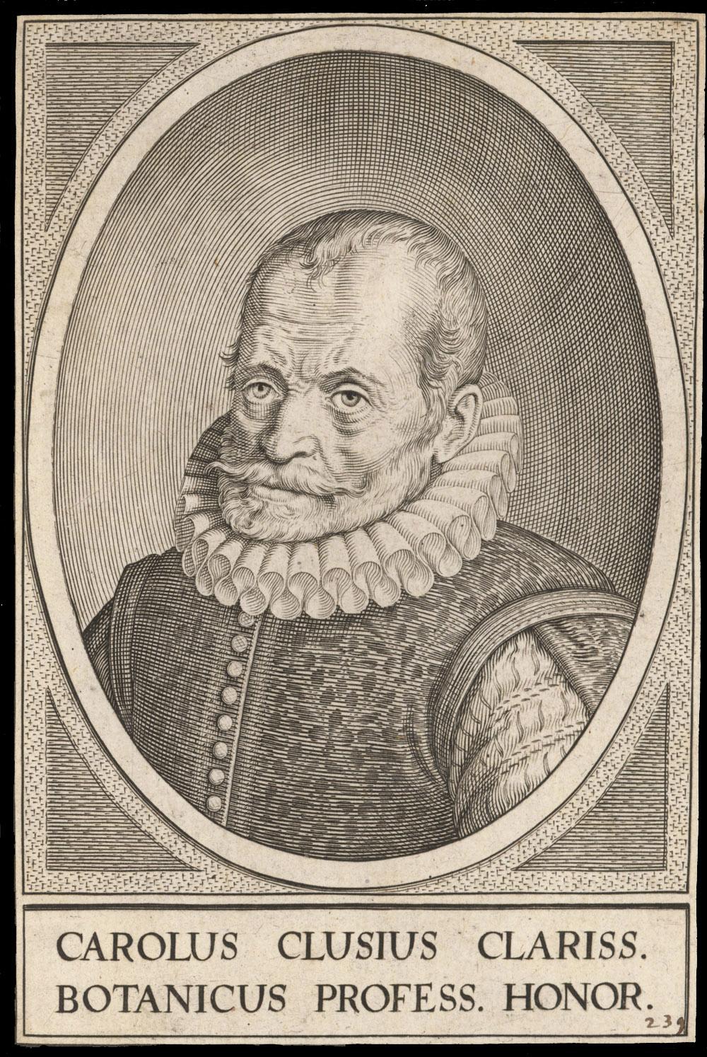 Portrait of Carolus Clusius,  Image number:SIL14-C4-05a