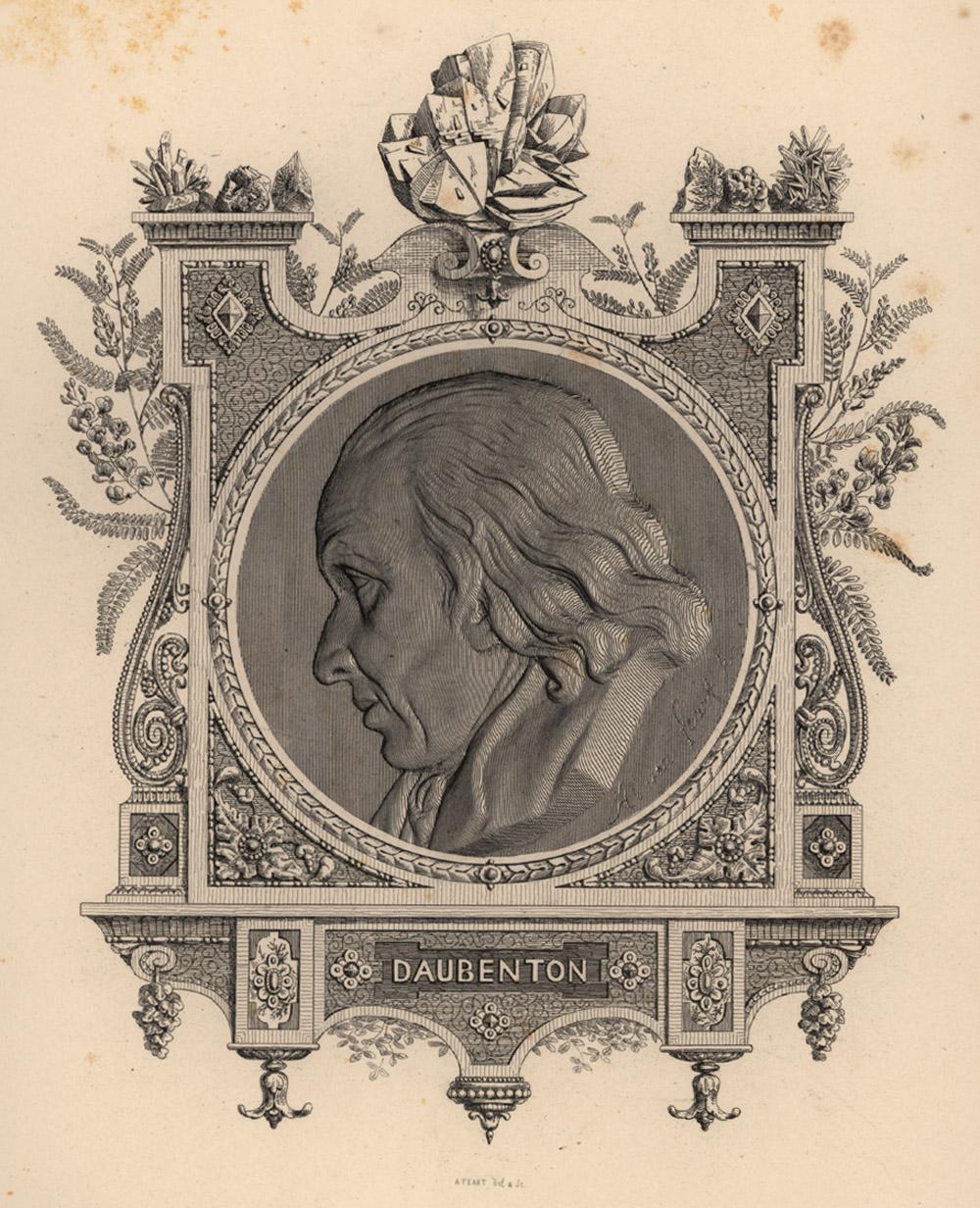 Portrait of Louis-Jean-Marie Daubenton,  Image number:SIL14-D1-13a