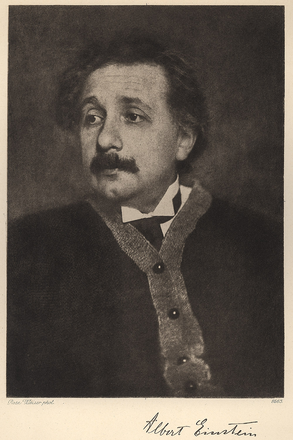 Portrait of Albert Einstein, Scientific Identity: Portraits from the Dibner Library of the History of Science and Technology, 2003
