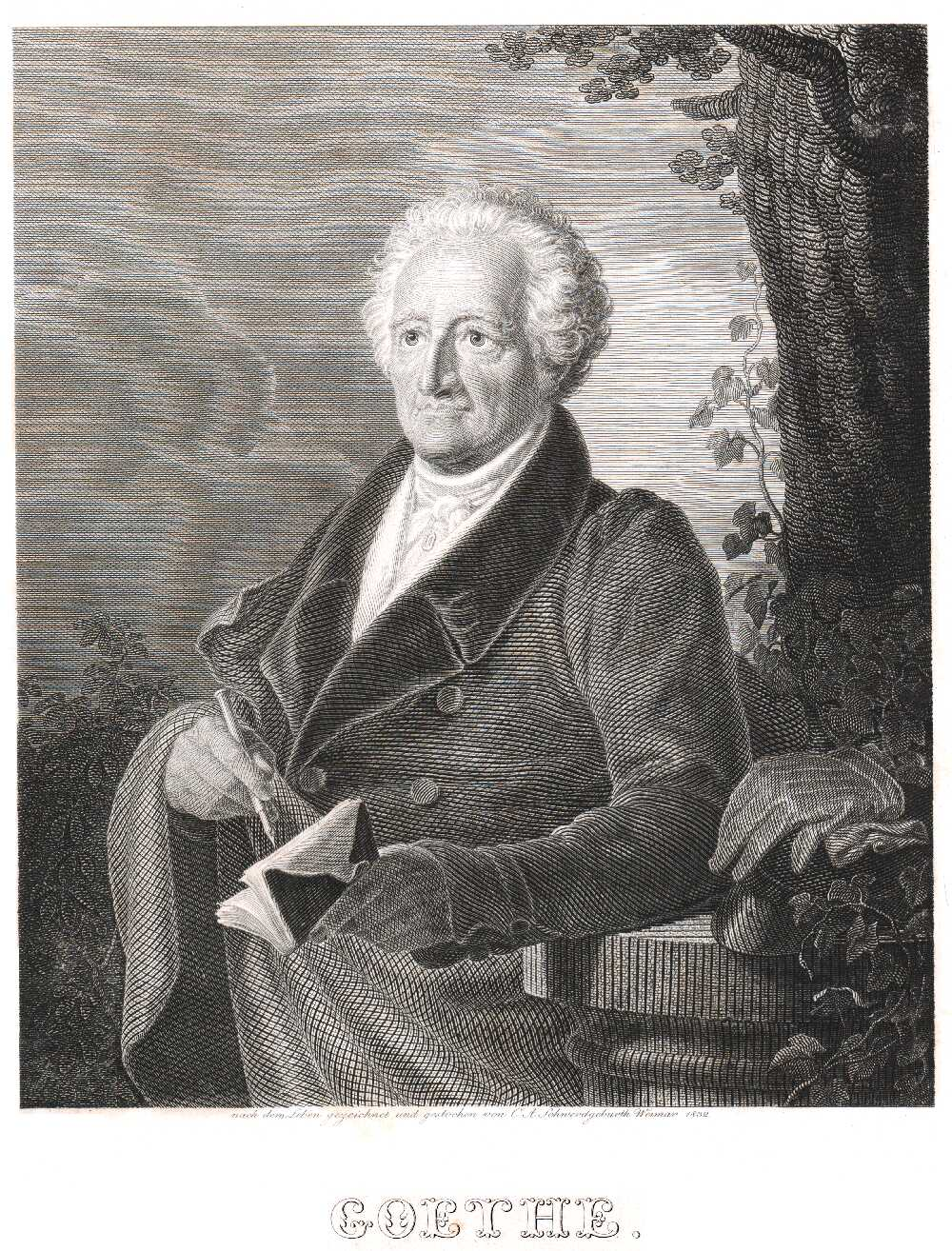 Portrait of Johann Wolfgang von Goethe,  Image number:SIL14-G003-02a