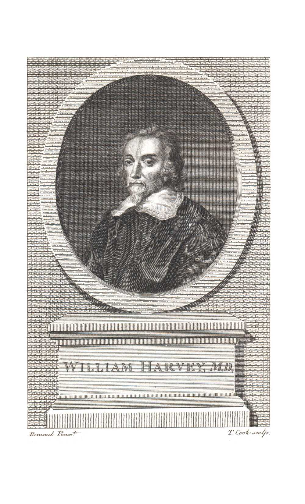 Portrait of William Harvey,  Image number:SIL14-H002-14a