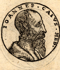 Portrait of John Caius