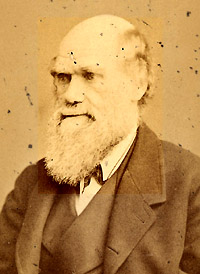 Portrait of Charles Robert Darwin