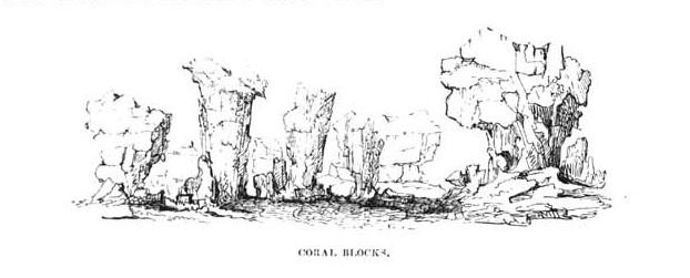 Volume I,  Image number:Sil19-01-450