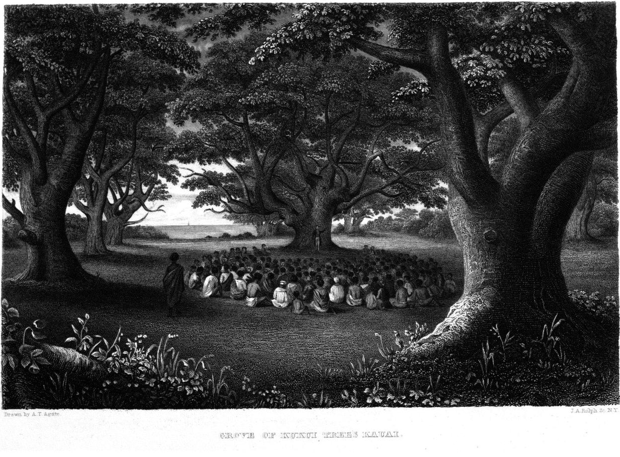 Volume IV,  Image number:Sil19-04-097
