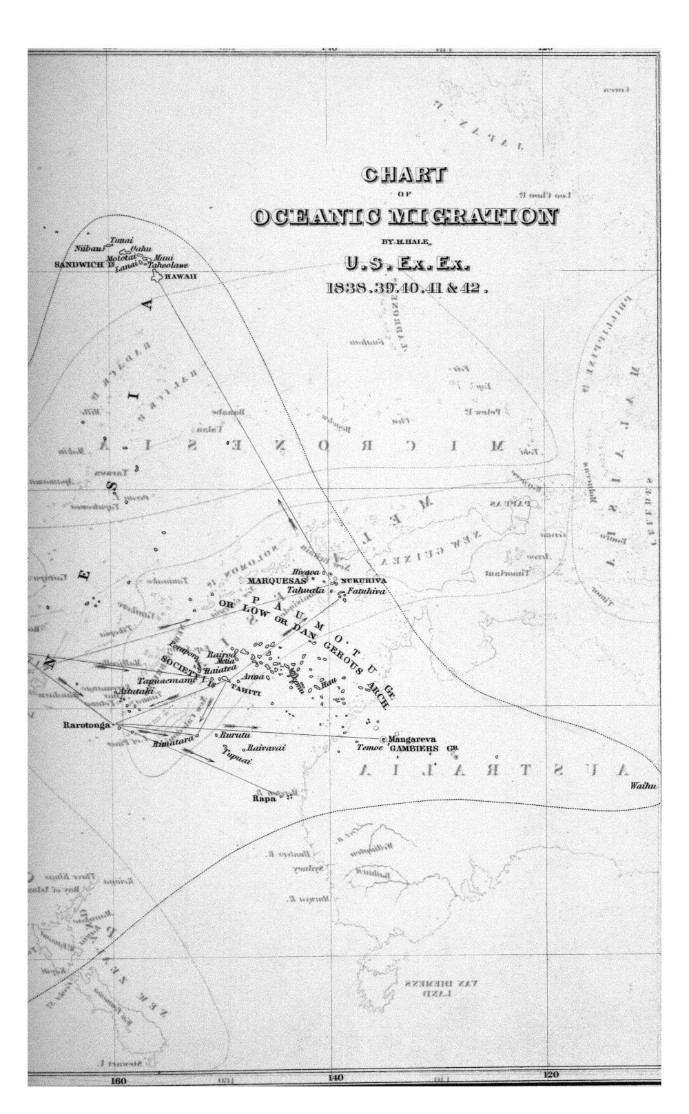Chart of Oceanic Migration, By H. Hale, U.S. Ex. Ex. 1838.39.40.41 & 42.,  Image number:Sil19-07-016