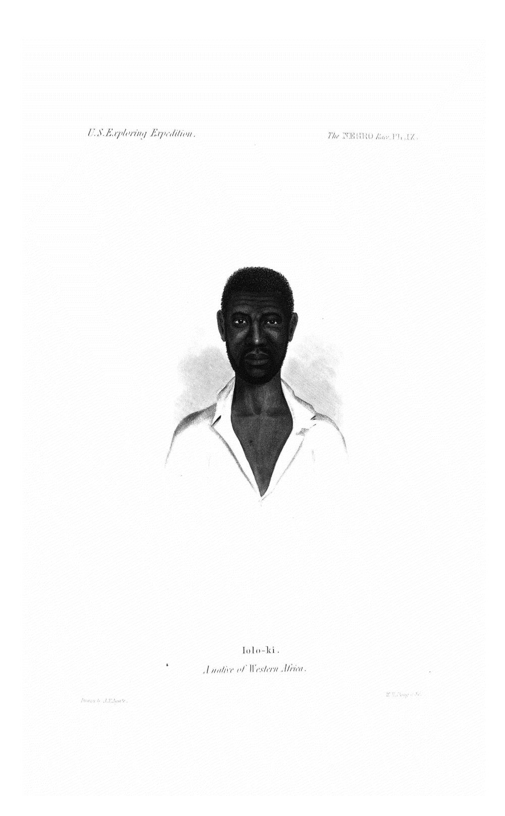 Negro Race Pl IX,  Image number:Sil19-13-204
