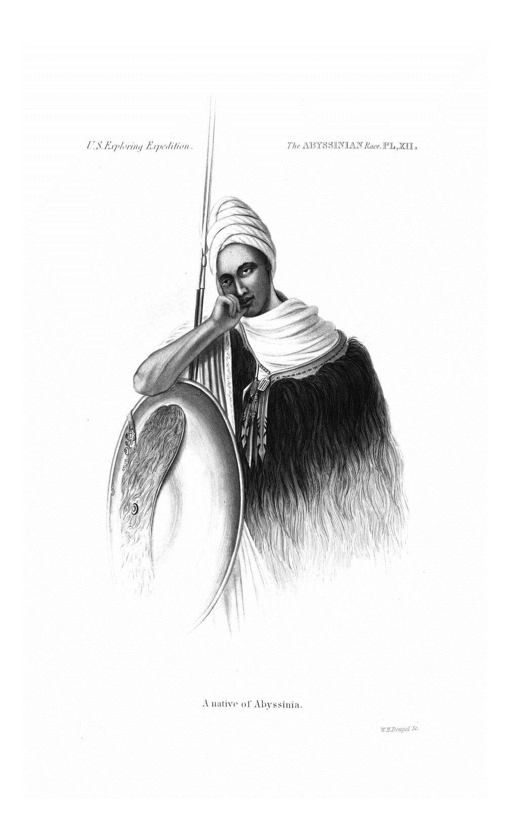 pl XII,  Image number:Sil19-13-249