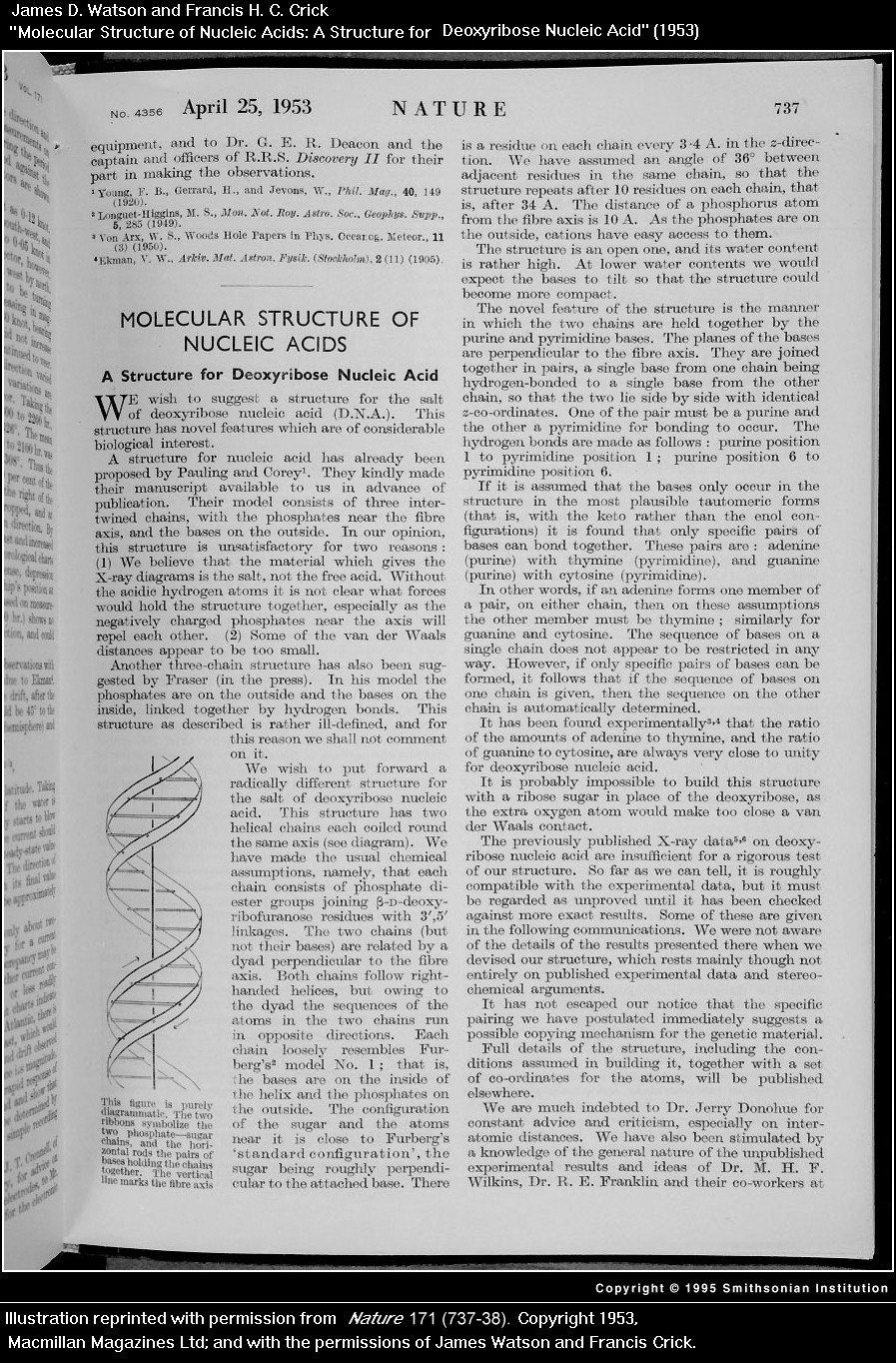 Watson and Crick's Nature paper, Arthur Kornberg