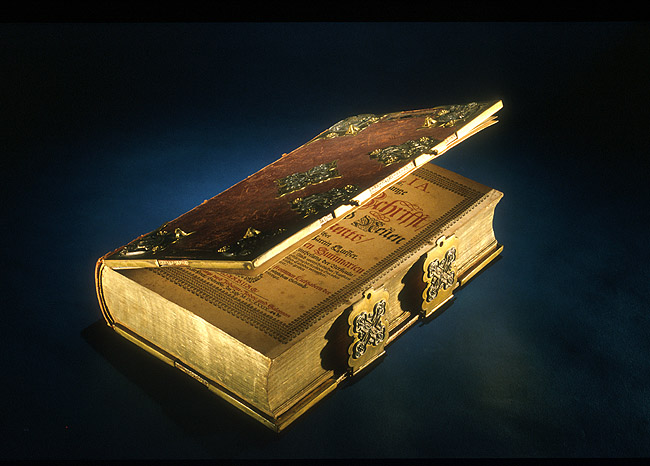 Bible. German