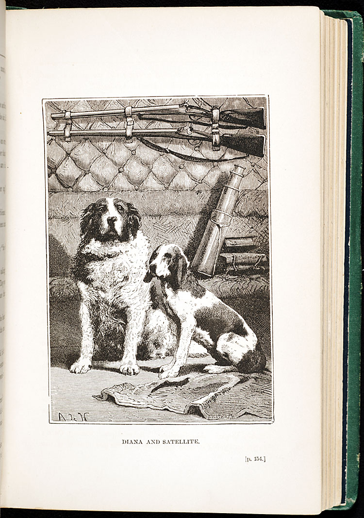 The two dogs,  Diana and Satellite, figure prominently in the first part of the story; they are forgotten when the capsule returns to earth.  Verne may have composed the ending much later than the rest of the book.,  Image number:SIL28-090-12