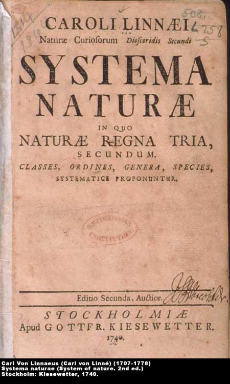 ,  Image number:2-9-Linnaeus