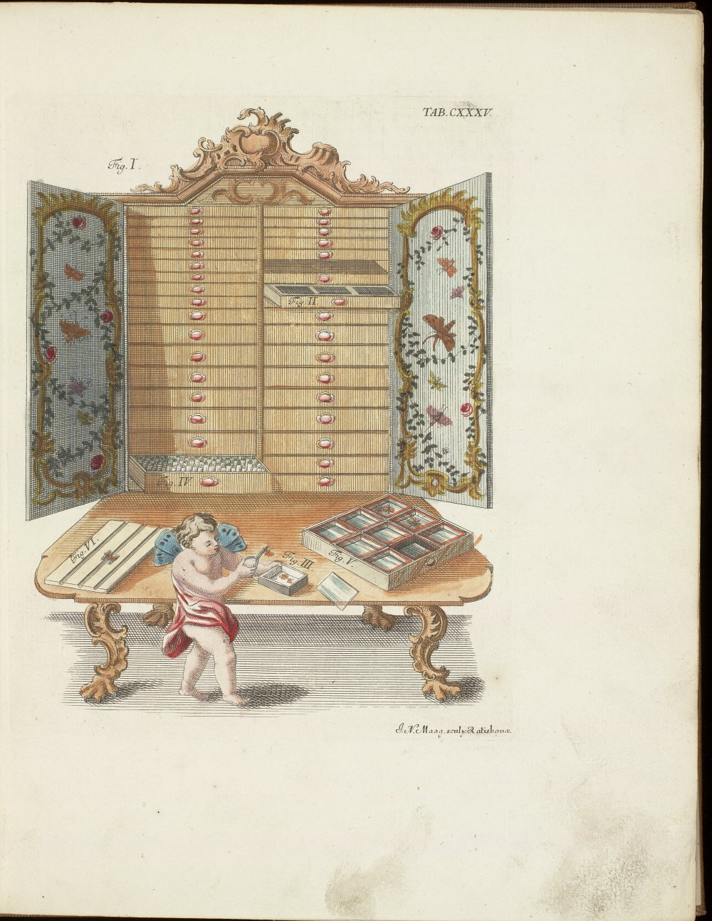 Tab. CXXXV: Collector's cabinet ; Cherub mounting and examining butterfly specimens,  Image number:SIL21-03-001