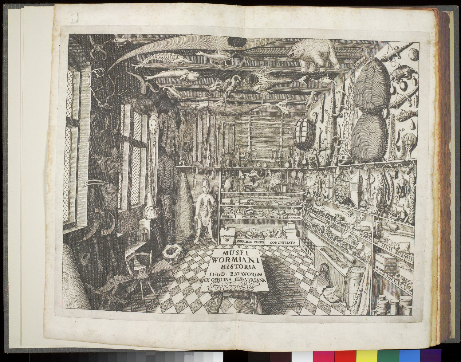 Double-page spread: Engraved title page : museum room,  Image number:SIL21-07-001