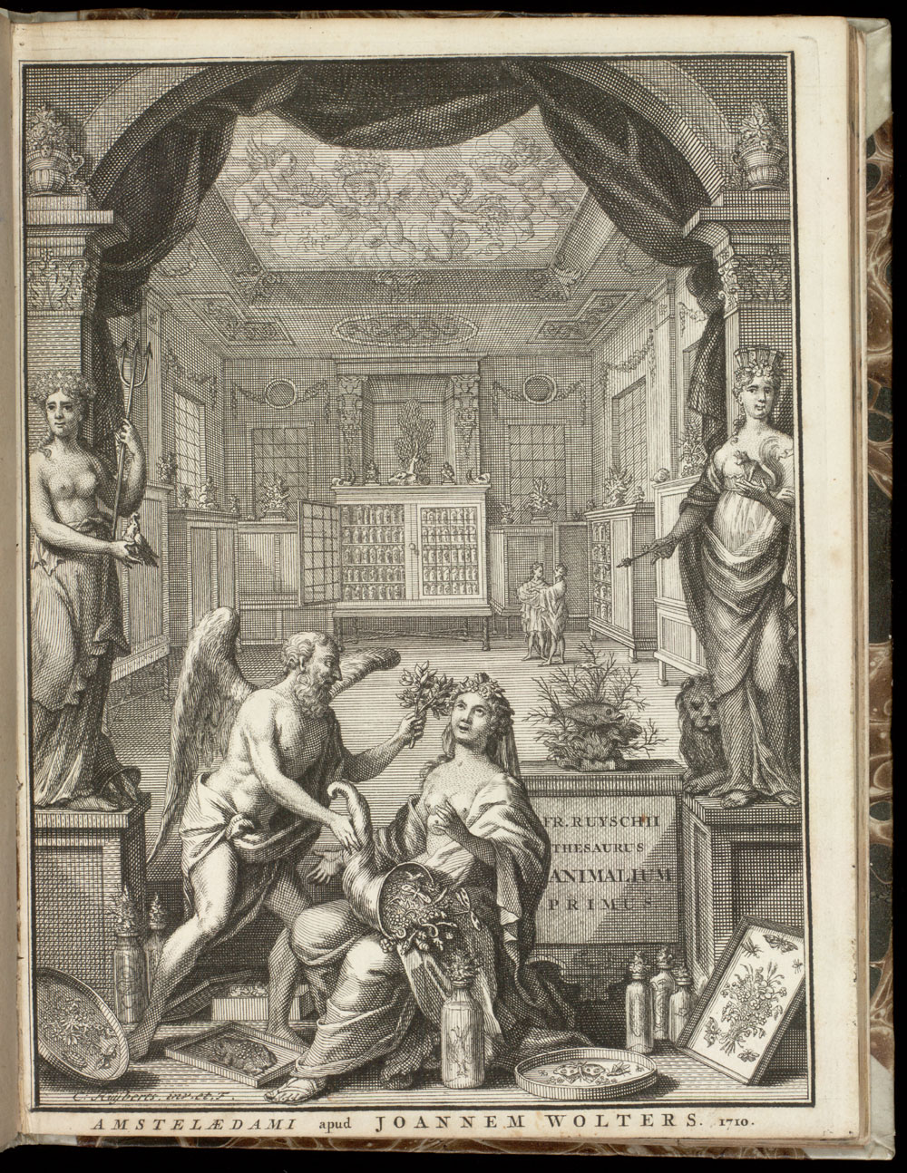 Frontispiece (reversed): Museum room,  Image number:SIL21-20-001