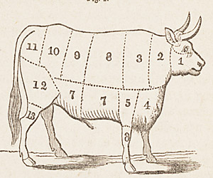 A butchery chart from