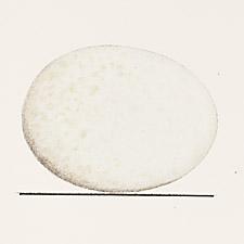 Plate XLIX