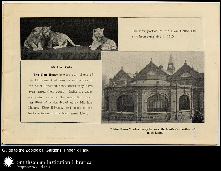 Lion cubs and the octagonal lion house.,  Image number:sil24-030-01a