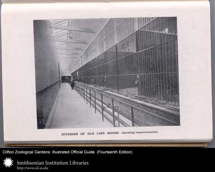 Some animal enclosures resemble prison.,  Image number:sil24-032-02