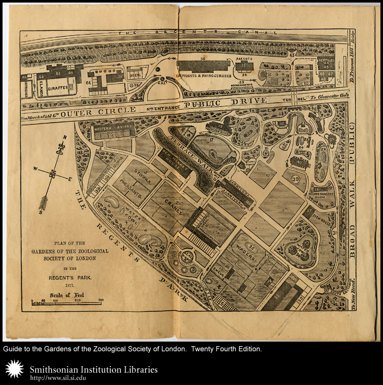 Plan of the Gardens of the Zoological Society of London in the Regent's Park.,  Image number:sil24-035-01