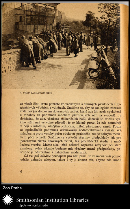 page 6, zoo-goers,  Image number:sil24-038-01