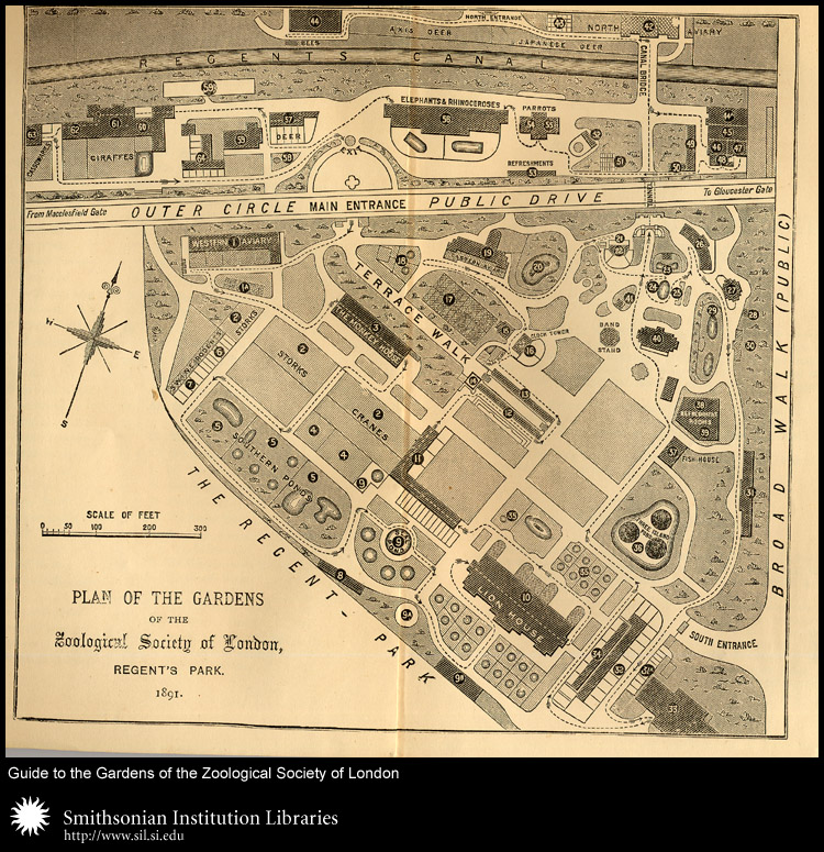 Plan of the Gardens of the Zoological Society of London, Regent's Park.,  Image number:sil24-048-02